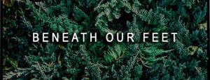Beneath Our Feet, Art, Moss Image, Chris Moss, text over green bushes