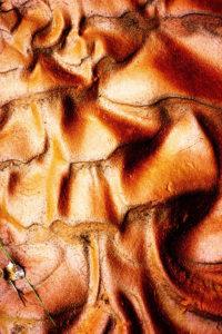 Chris Moss, Moss Image, Mud, Conceptual Art