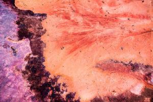 Conceptual Art, Moss Image, picture of orange sand and purple rocks