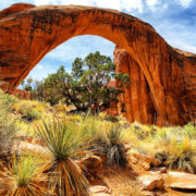 Landscape, Chris Moss, Moab Photographer, Moss Image, Picture of Rainbow bridge sandstone structure with orange rock and grass