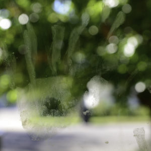 Photography, image of hand print on a window with trees in back ground