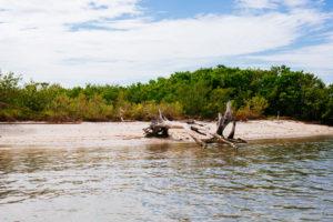 Florida island, moss image, moab photographer, chris mos