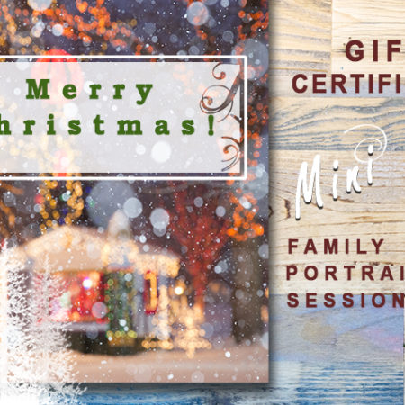 gift certificate moss image mini session